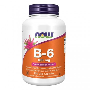 Vitamin B-6 100mg - 250vcaps