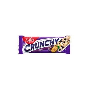 Baton Crunch - 40g - Plum Vani Coat (25 Pcs per box)